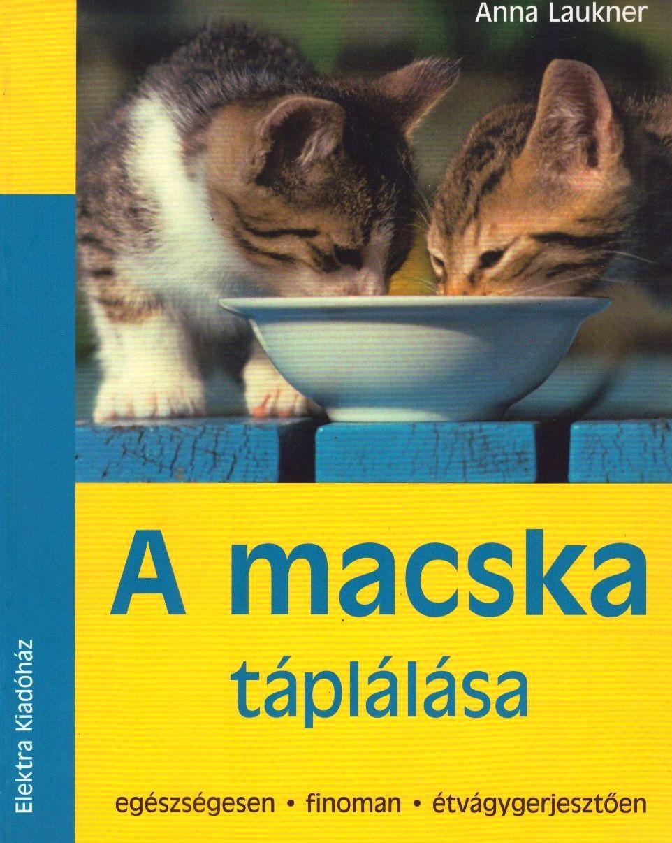 A macska táplálása - Egészségesen, finoman, étvágygerjesztően