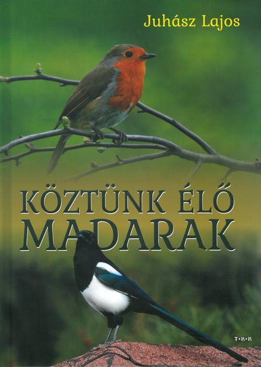 Köztünk élő madarak